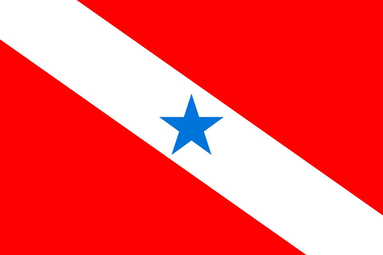 DPVAT Pará 2022